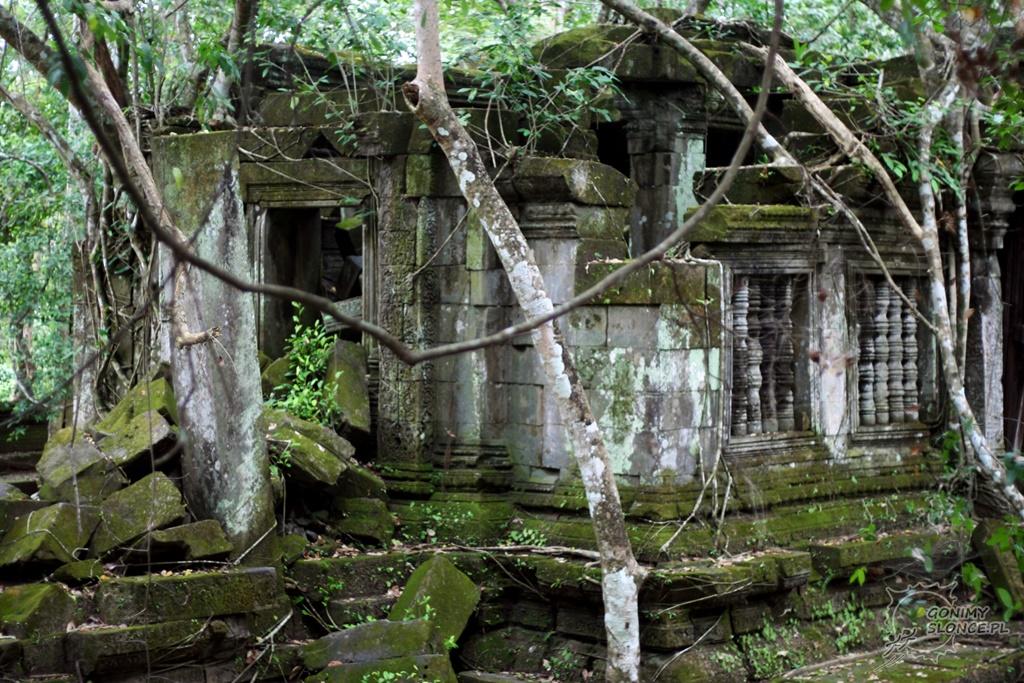 Beng Melea - drzewa na świątyniach w Kambodży