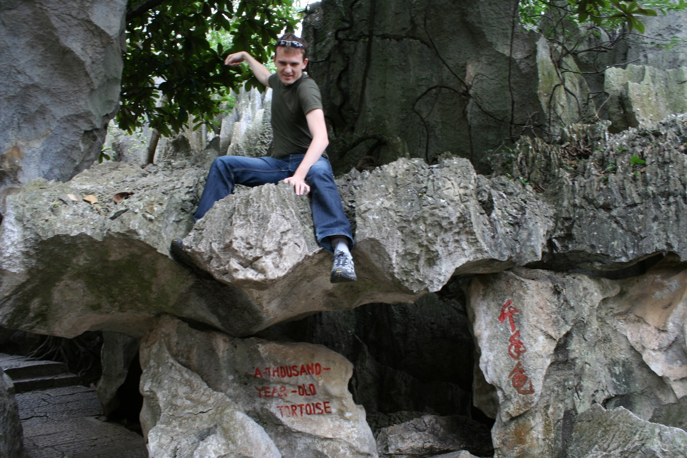 Stone Forest 6