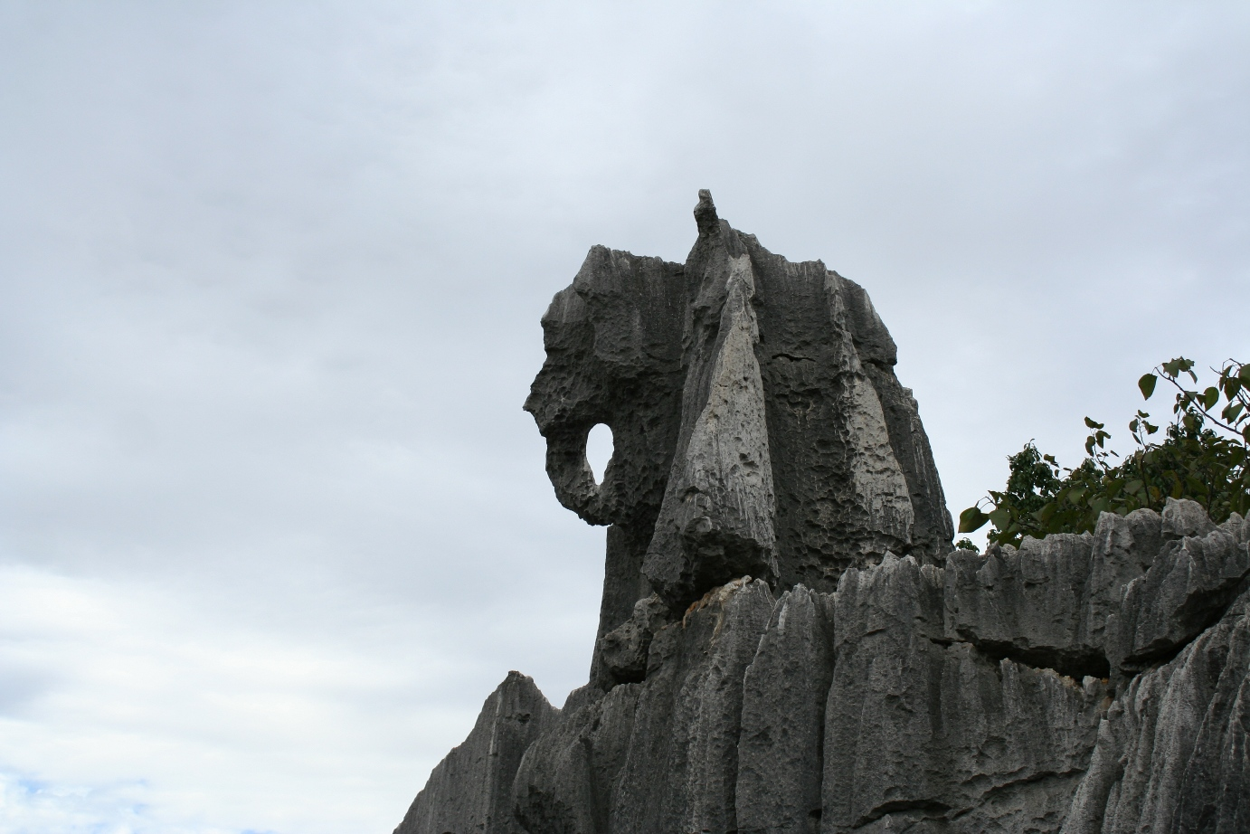 Stone Forest 3