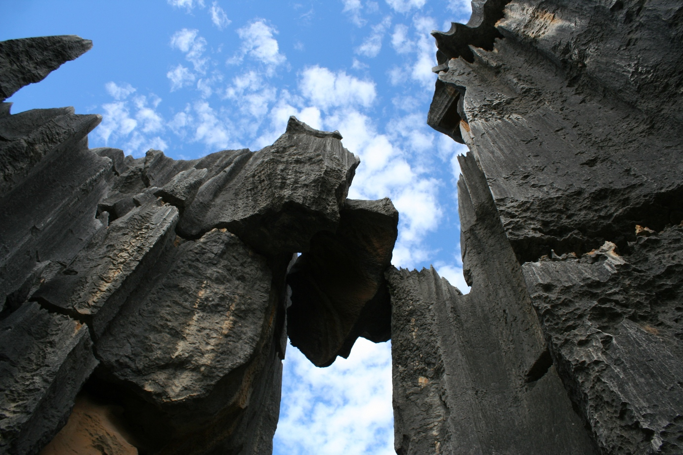 Stone Forest 4