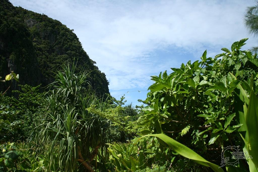 Phi Phi Islands, Tajlandia