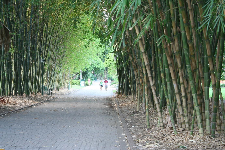 Southbank park