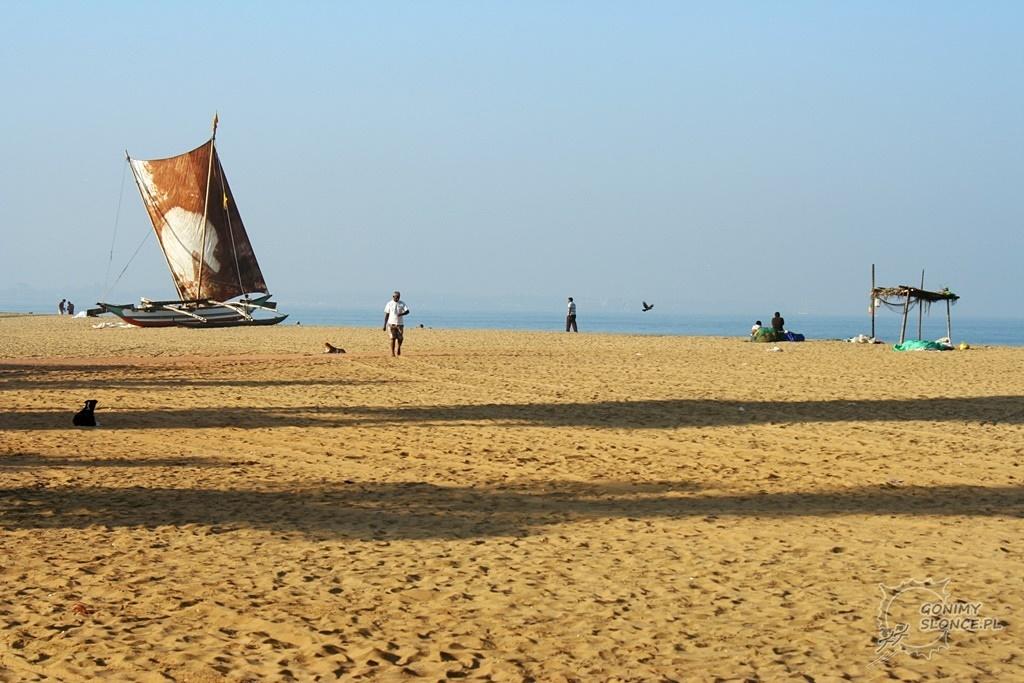 Plaża w Negombo i tradycyjne żagle