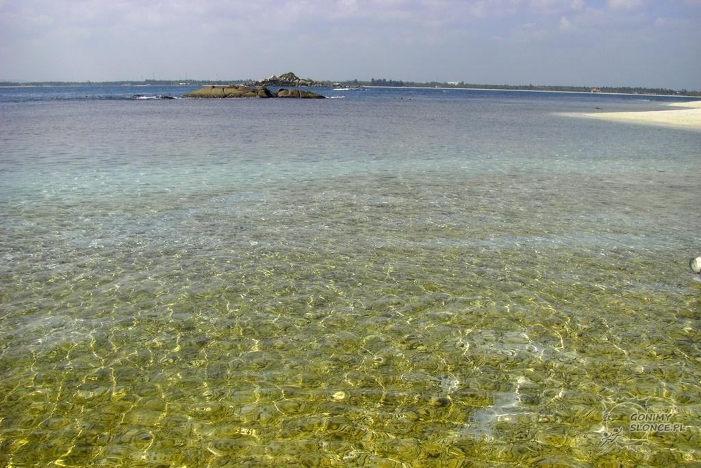 Miejsce do snorkelingu