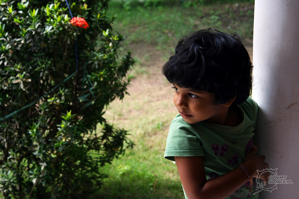 Seyara - Mała Lankijka