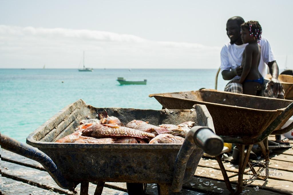 Wyspa Sal - targ rybny