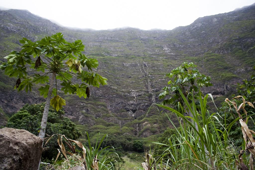 Wyspa Santo Antao - dolina Paul