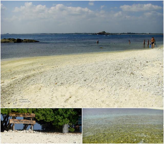TOP 3 Pigeon Island Beach, Sri Lanka