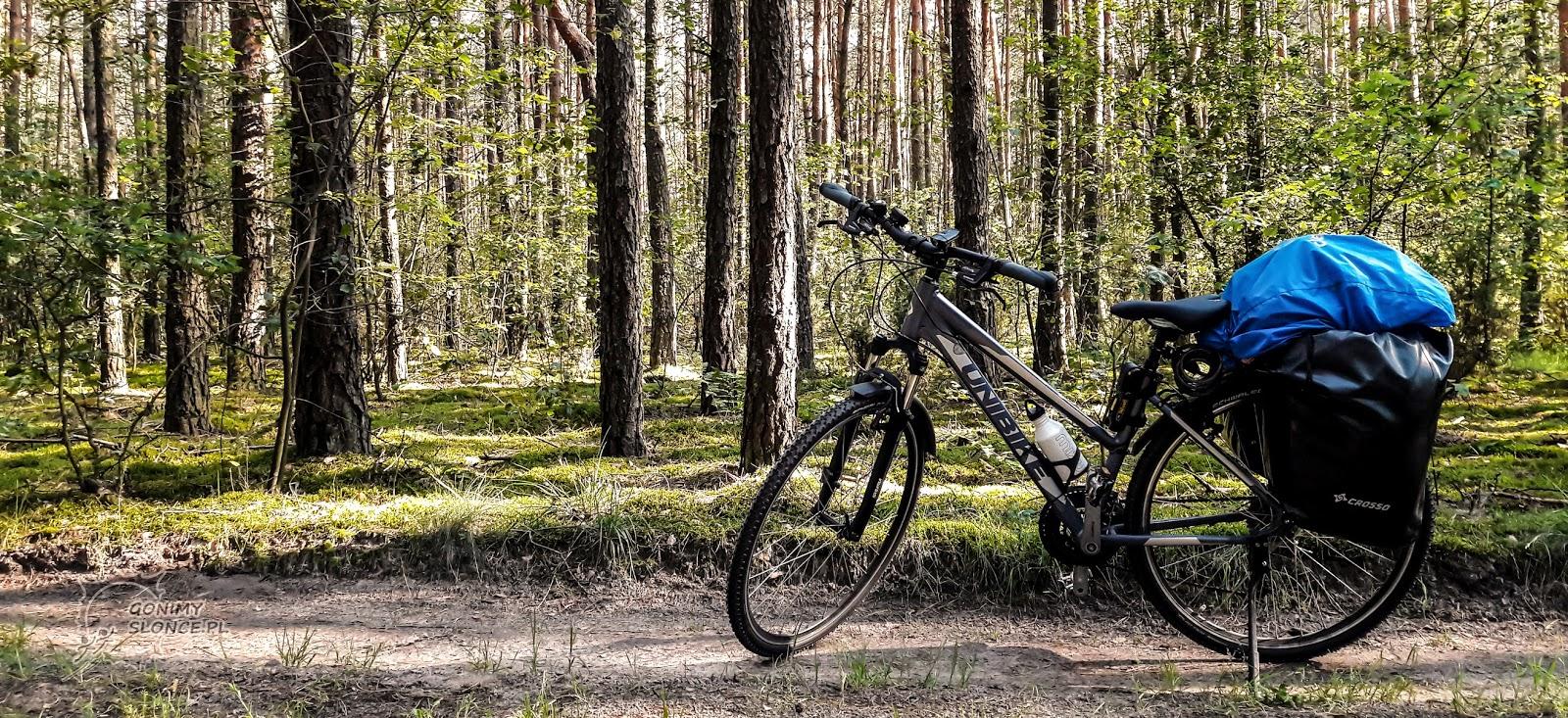 Rower z sakwami podczas wyprawy rowerowej