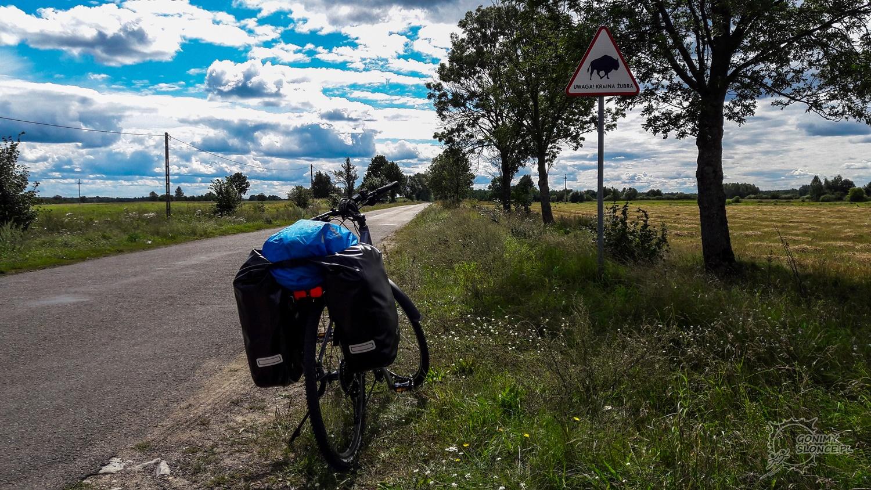 Kraina żubra, czyli rowerem przez Podlasie