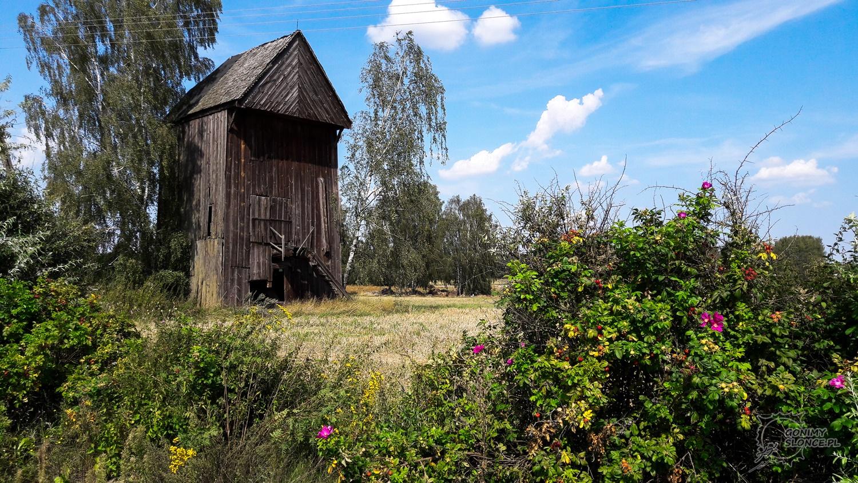 Stary wiatrak, zbaczając z Green Velo