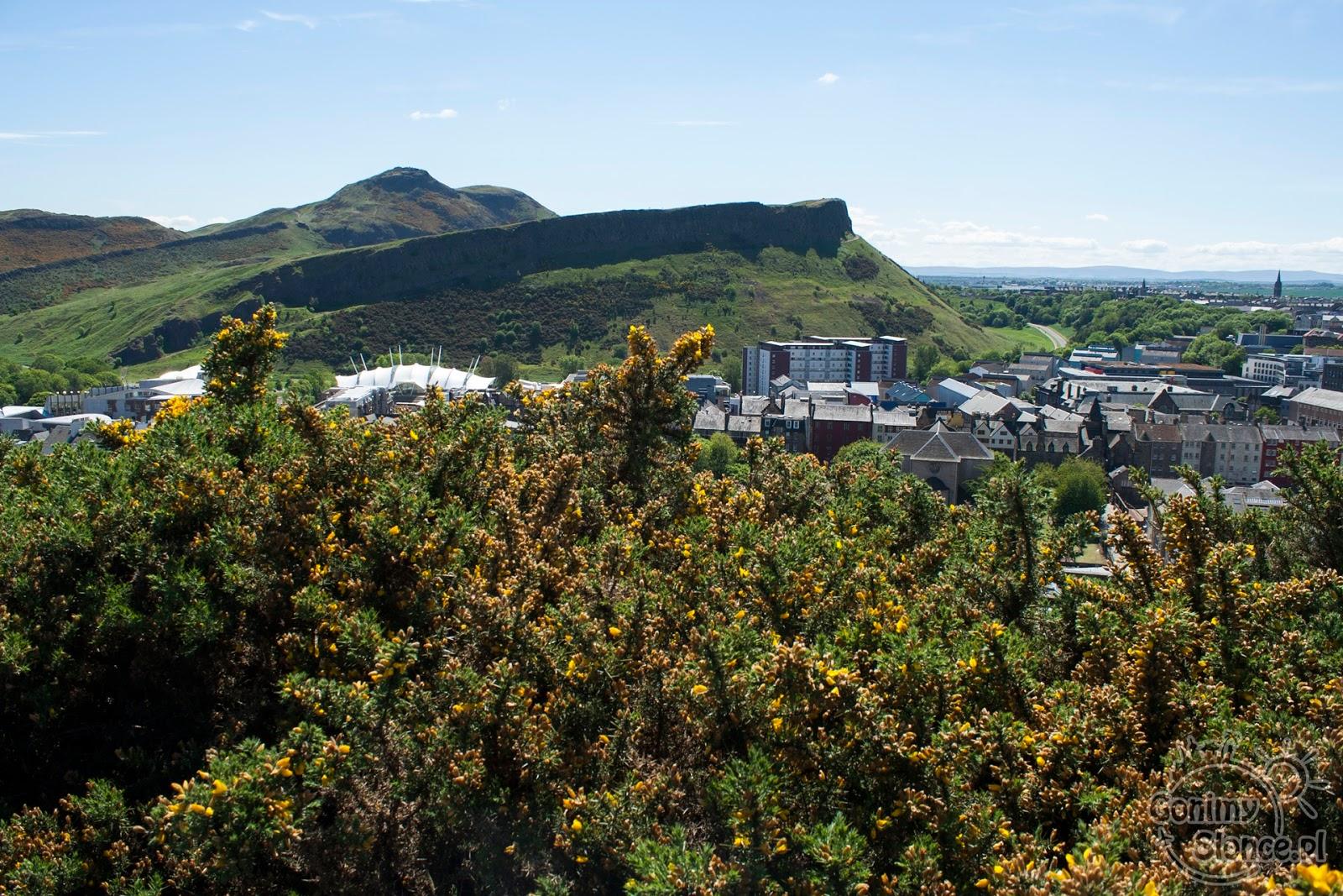 Arthur's Seat - widok na wygasły wulkan z Calton Hill