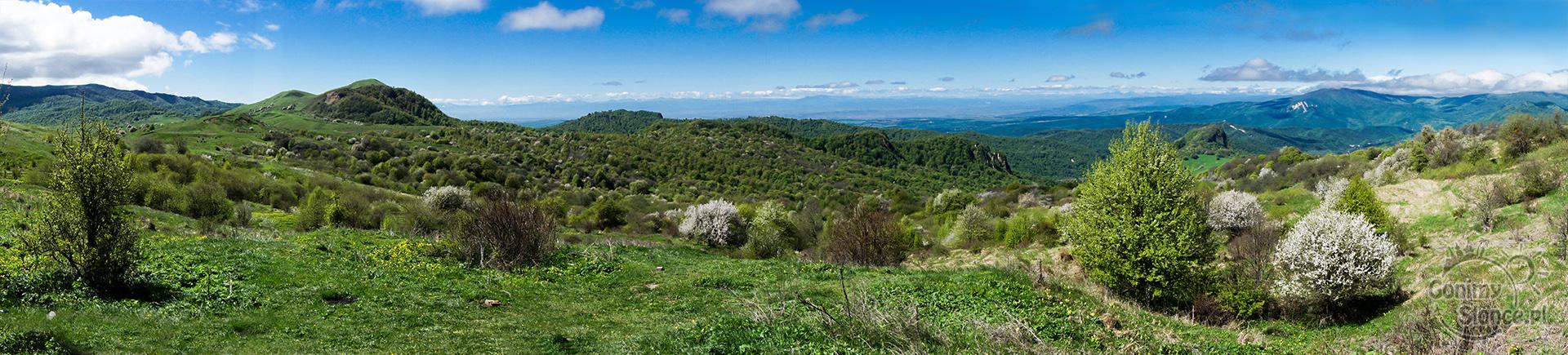 widok z trasy do Kachetii, Gruzja