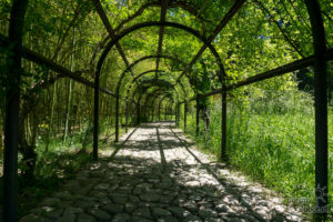 Ogrody Czawczawadzego, Gruzja