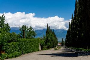 Prawie jak Toskania, a to Kachetia!