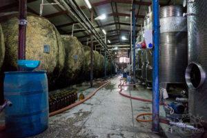 Produkcja wina - Gruzja, Kachetia