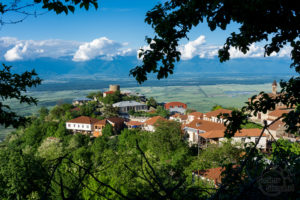Widok na Dolinę Alazani, Signagi