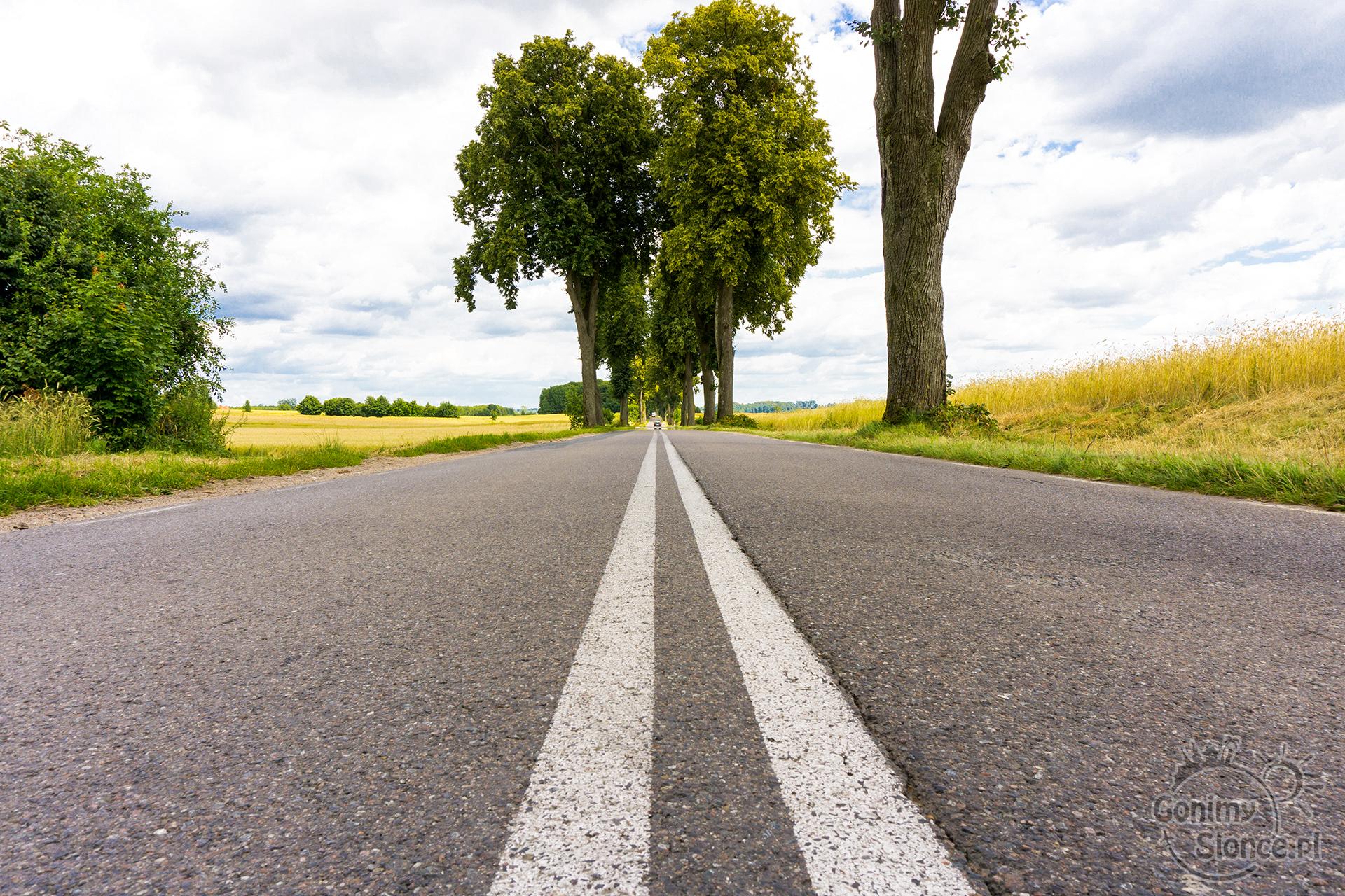 Droga w nieznane - witaj przygodo! Rowerowe trasy w Polsce
