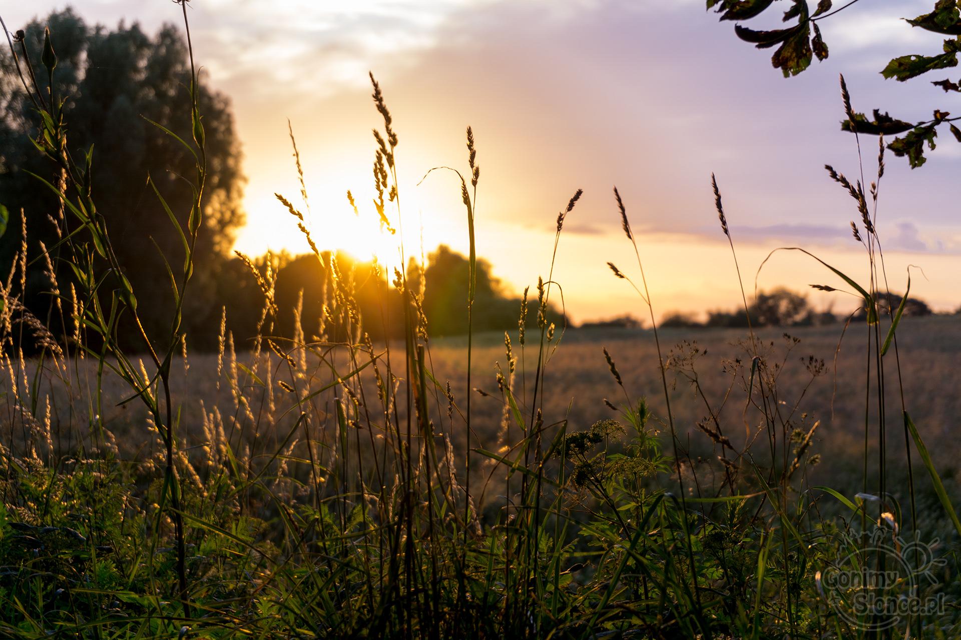 Zachód słońca - Polska - wyprawa rowerowa
