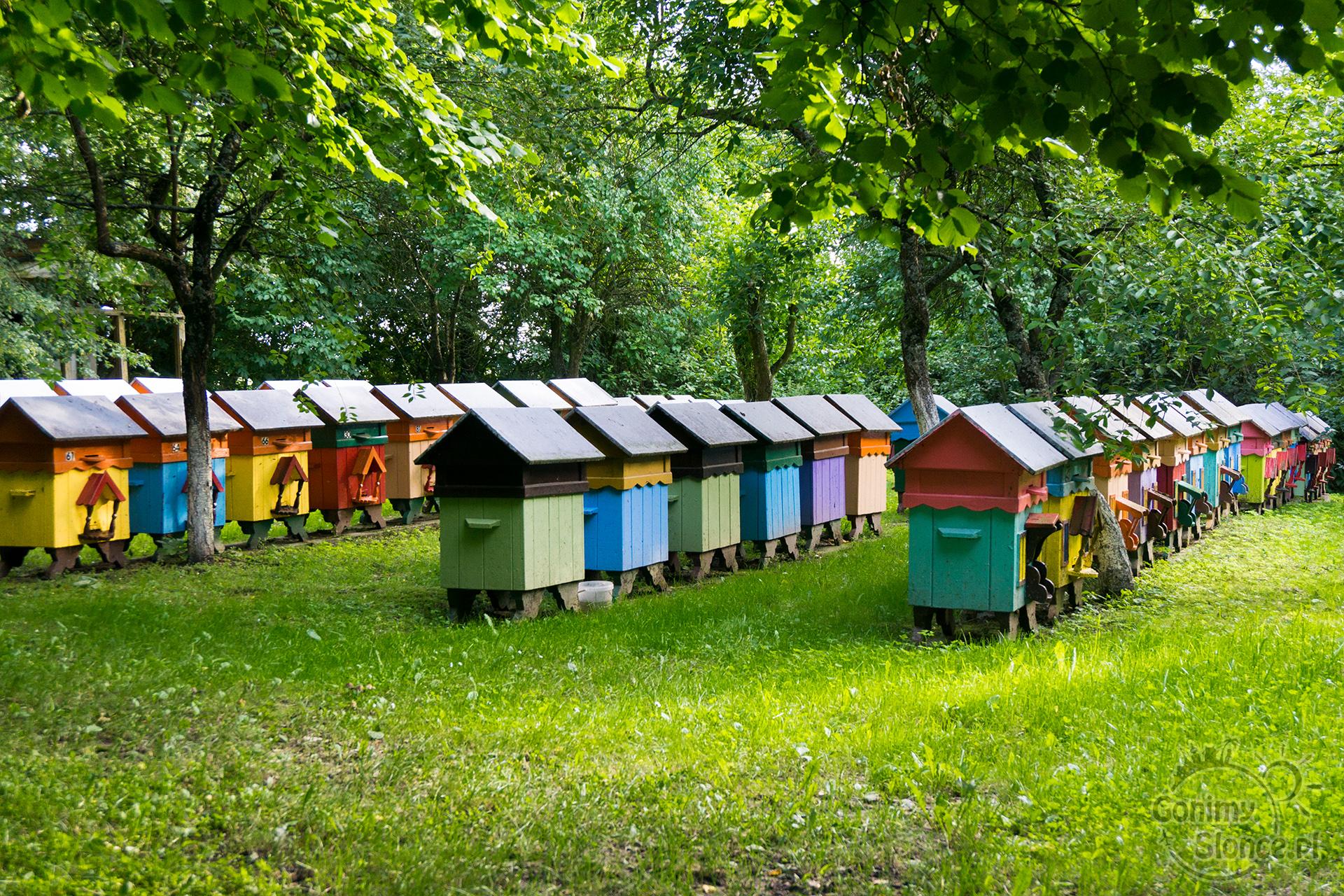 Ule dla pszczół - kolorowy zakątek - uwielbiam miód!