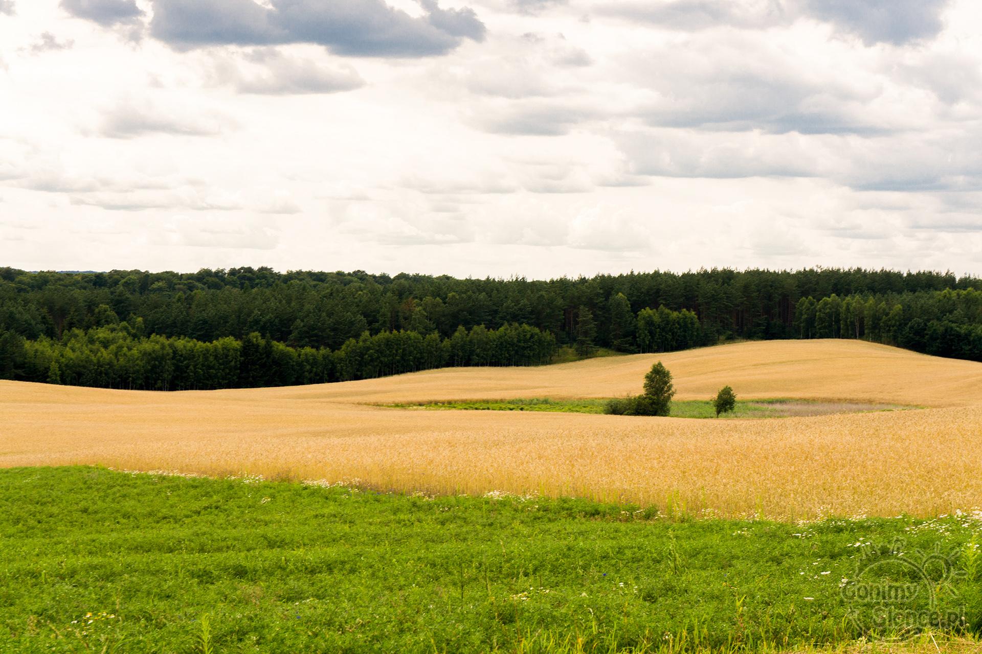 Teraz Polska - najpiękniejsze zdjęcia z Polski