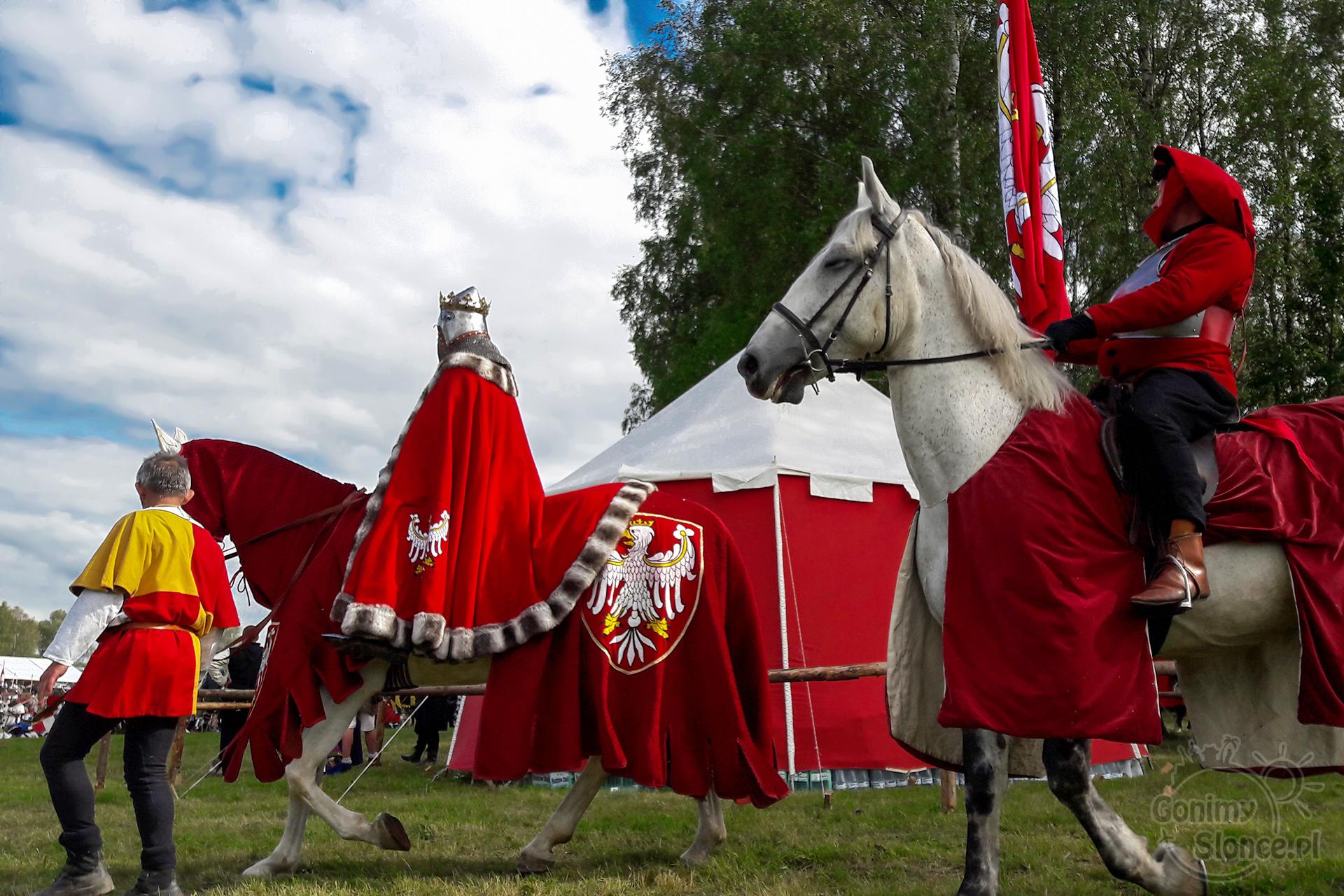 Władysław Jagiełło w dzisiejszych czasa, Bitwa pod Grunwaldem