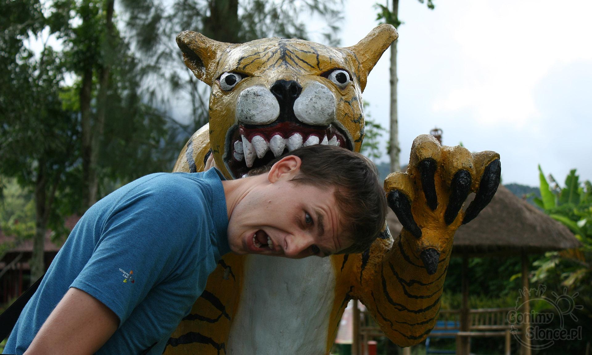 Bali, Indonezja | Głupawka w podróży  / wady podróży dookoła świata