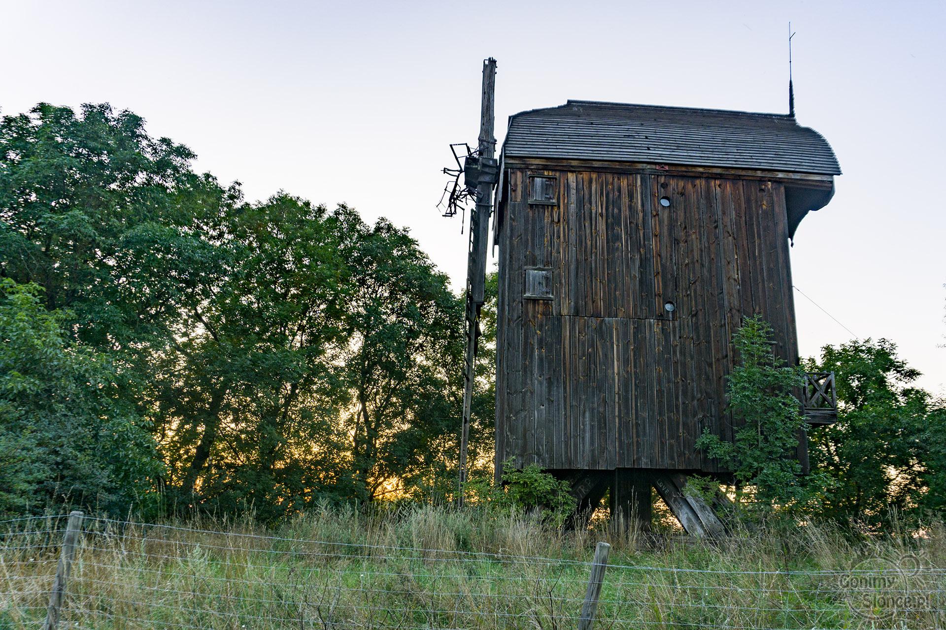 Drewnica - Żuławy - wiatrak typu koźlak