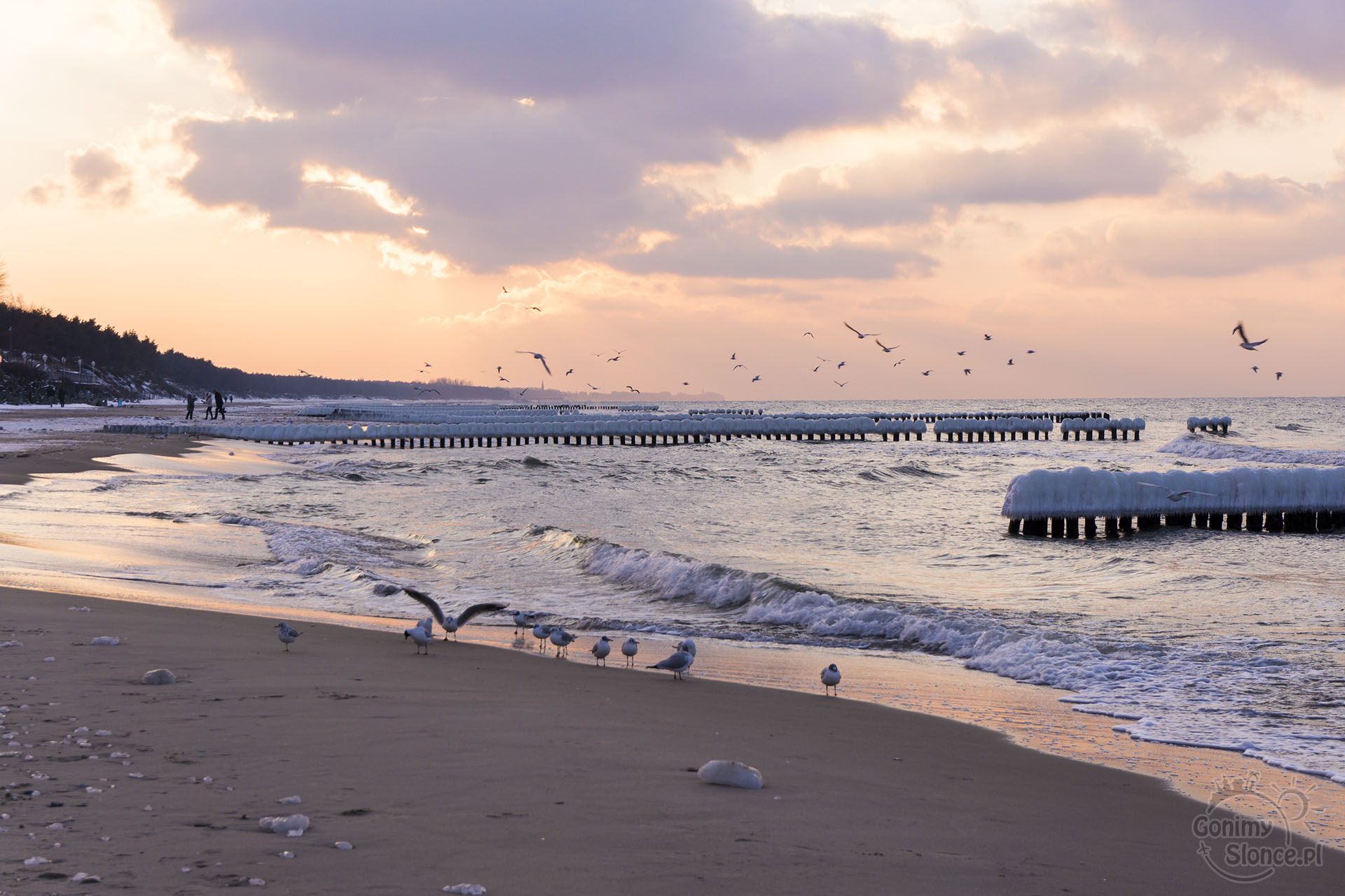 Mielno plaża, Spa Unitral GonimySlonce.pl