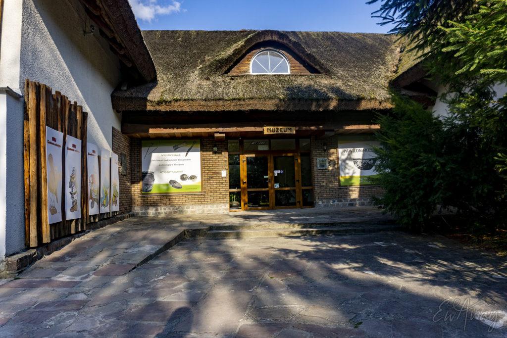 Budynek Muzeum - Rezerwat archeologiczny w Biskupinie