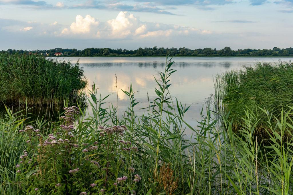 Jezioro Biskupińskie